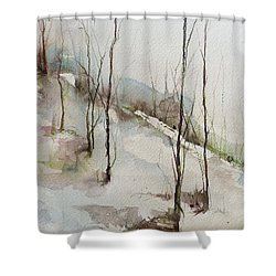 Colorado Morning Shower Curtain