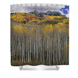 Shower Curtain featuring the photograph Colorado Splendor by Gary Lengyel