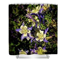 Colorado State Flower Shower Curtain