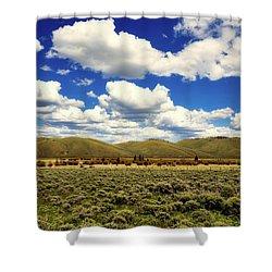 Colorado Vista Shower Curtain by L O C