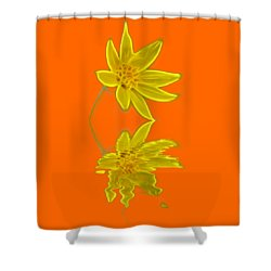 Colorado Wildflower Shower Curtain by Shane Bechler