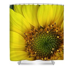Colorado Wildflower Sunshine  Shower Curtain