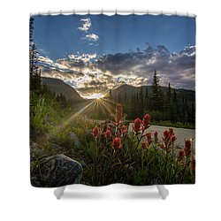 Colorado Wildflowers Under Evening Sun Shower Curtain by Michael J Bauer