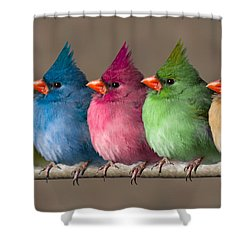 Colored Chicks Shower Curtain