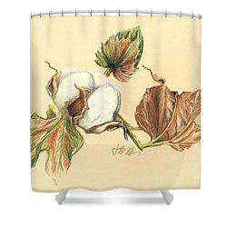 Colored Pencil Cotton Plant Shower Curtain