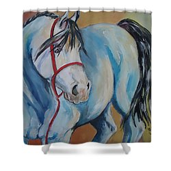 Colored Pony Shower Curtain