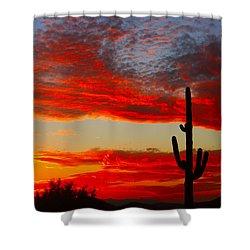 Colorful Arizona Sunset Shower Curtain