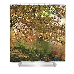 Colorful Autumn Under Glass Shower Curtain