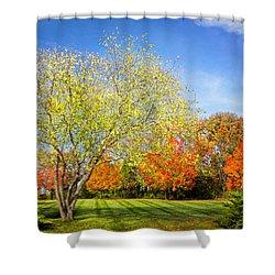 Colorful Backyard Scene Shower Curtain