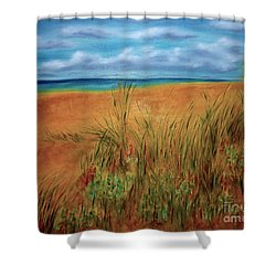 Colorful Beach Shower Curtain