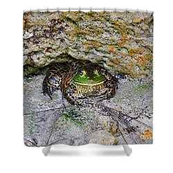 Shower Curtain featuring the photograph Colorful Camo by Al Powell Photography USA