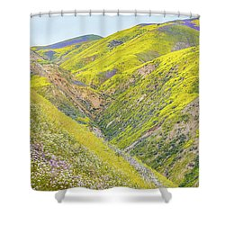 Shower Curtain featuring the photograph Colorful Canyon by Marc Crumpler