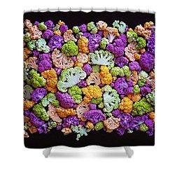 Colorful Cauliflower Mosaic Shower Curtain
