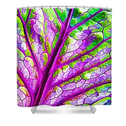 Colorful Coleus Abstract 1 Shower Curtain