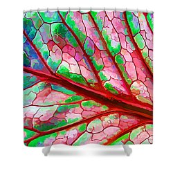 Colorful Coleus Abstract 5 Shower Curtain