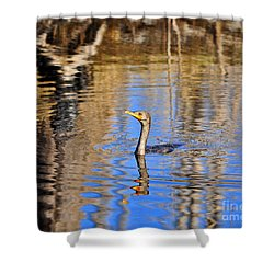 Shower Curtain featuring the photograph Colorful Cormorant by Al Powell Photography USA