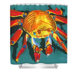 Colorful Crab II Shower Curtain by Stephen Anderson