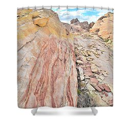 Colorful Crest In Valley Of Fire Shower Curtain