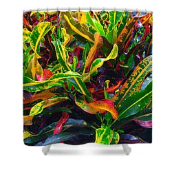 Colorful Crotons Shower Curtain
