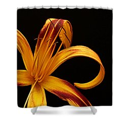 Shower Curtain featuring the photograph Colorful Curls by Judy Vincent