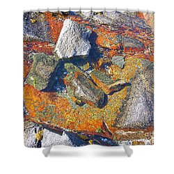 Colorful Earth History Shower Curtain by Heiko Koehrer-Wagner
