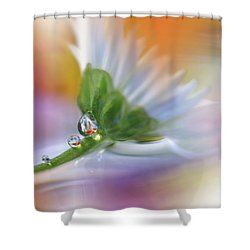 Colorful Explosion... Shower Curtain by Juliana Nan