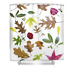 Colorful Fall Leaves Shower Curtain