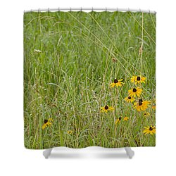 Colorful Field Shower Curtain