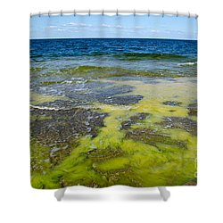 Shower Curtain featuring the photograph Colorful Flat Rock Coast by Kennerth and Birgitta Kullman