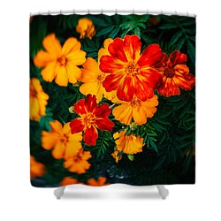 Shower Curtain featuring the photograph Colorful Flowers by Silvia Ganora