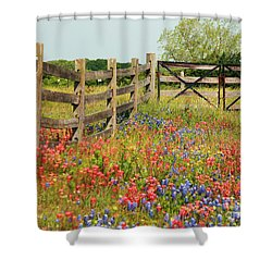 Colorful Gate Shower Curtain