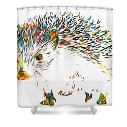Colorful Hedgehog Shower Curtain