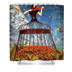 Colorful Hummingbird Song Shower Curtain by Mihaela Pater