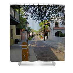Colorful Hypolita Street Shower Curtain