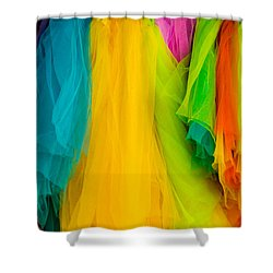 Colorful Shower Curtain by Jay Stockhaus