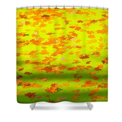 Colorful Leaves On Canal Shower Curtain