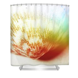 Colorful Light Flare Over Seashell Shower Curtain