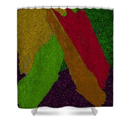 Shower Curtain featuring the digital art Colorful by Michelle Audas