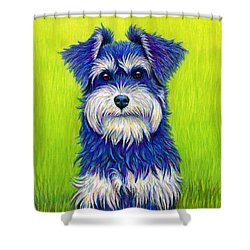 Colorful Miniature Schnauzer Dog Shower Curtain