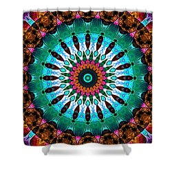 Colorful No. 9 Mandala Shower Curtain by Joy McKenzie