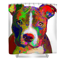Colorful Pit Bull Terrier  Shower Curtain
