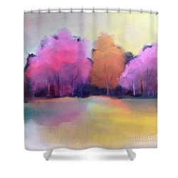 Colorful Reflection Shower Curtain