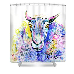 Shower Curtain featuring the painting Colorful Sheep by Zaira Dzhaubaeva