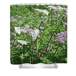 Colorful Spring Flowers In Switzerland Meadow Shower Curtain