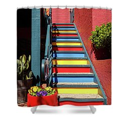 Colorful Stairs Shower Curtain by James Eddy