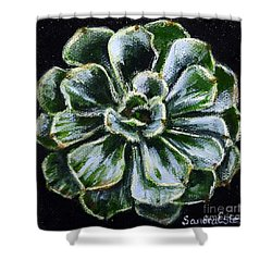 Colorful Succulent Shower Curtain