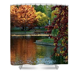 Shower Curtain featuring the photograph Colorful Trees Boston by Haleh Mahbod