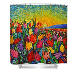 Colorful Tulips Field Sunrise - Abstract Impressionist Palette Knife Painting By Ana Maria Edulescu Shower Curtain