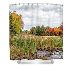 Colorful Webster Bog Shower Curtain