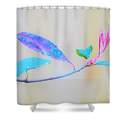Colorfully Designed Shower Curtain